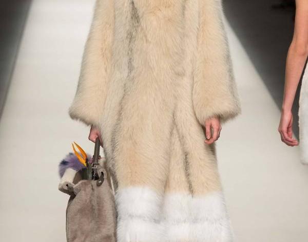 palta-2016